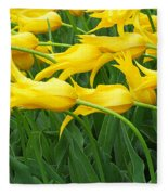 Keukenhof Gardens 13 Fleece Blanket