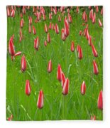 Keukenhof Gardens 25 Fleece Blanket