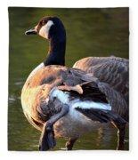 Kickin It Up Fleece Blanket