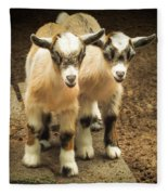 Kids One And Two Fleece Blanket