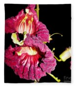 Kigeli Africana Fleece Blanket