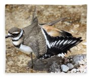Killdeer Fakeout Fleece Blanket
