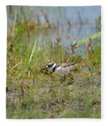 Killdeer Hatchling Fleece Blanket