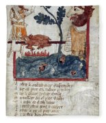 King Arthur And Giant Fleece Blanket