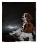 King Charles Puppies Fleece Blanket