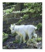 King Of The Mountain Fleece Blanket