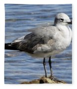 King Of The Rock Seagull Fleece Blanket
