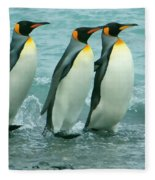 King Penguins Going To Sea Fleece Blanket