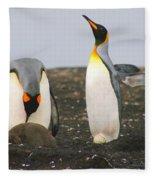 King Penguins With Chick And Egg Fleece Blanket