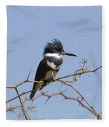 Kingfisher On Mesquite Tree Fleece Blanket