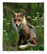 Kit Red Fox Fleece Blanket