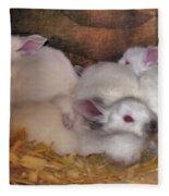 Kits In A Box Fleece Blanket