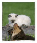 Kitten And Puppy Playing Fleece Blanket