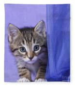 Kitten With A Curtain Fleece Blanket