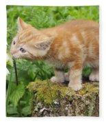 Kitten With Flowers Fleece Blanket
