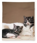 Kittens Lying With Puppy Fleece Blanket