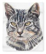 Kitty Kat Iphone Cases Smart Phones Cells And Mobile Cases Carole Spandau Cbs Art 337 Fleece Blanket