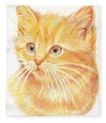 Kitty Kat Iphone Cases Smart Phones Cells And Mobile Cases Carole Spandau Cbs Art 339 Fleece Blanket