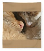 Kity Kat Love Fleece Blanket
