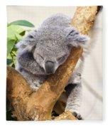 Koala Sleeping  Fleece Blanket