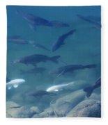 Koi Pond Fleece Blanket