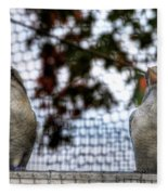 Kookaburra's On Guard At The Buffalo Zoo Fleece Blanket