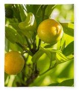 Kumquats Fleece Blanket