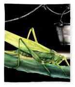 La Locusta E Il Secchio Fleece Blanket