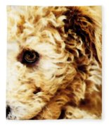 Labradoodle Dog Art - Sharon Cummings Fleece Blanket