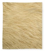 Labrador Coat Fleece Blanket