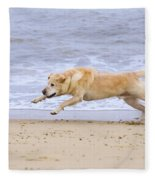 Labrador Dog Chasing Ball On Beach Fleece Blanket