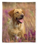 Labrador Dog Fleece Blanket