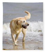 Labrador Dog Playing On Beach Fleece Blanket