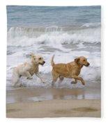 Labrador Dogs Running Fleece Blanket