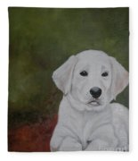 Labrador Fleece Blanket