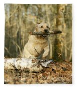 Labrador Jumping With Stick Fleece Blanket