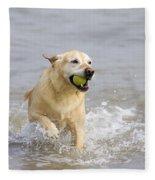 Labrador-mix Retrieving Ball Fleece Blanket