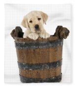 Labrador Puppy In Bucket Fleece Blanket