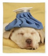 Labrador Puppy With Ice Pack Fleece Blanket