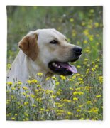 Labrador Retriever Dog Fleece Blanket