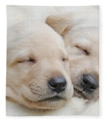 Labrador Retriever Puppies Sleeping  Fleece Blanket