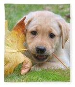 Labrador Retriever Puppy With Autumn Leaf Fleece Blanket