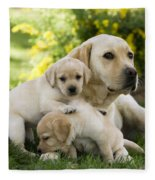 Labrador With Young Puppies Fleece Blanket