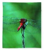 Lace Wings Fleece Blanket