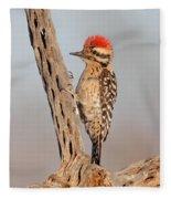 Ladder-backed Woodpecker Fleece Blanket