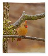 Lady Cardinal Fleece Blanket