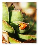 Ladybug And Chick Fleece Blanket