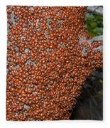 Ladybug Tree Fleece Blanket