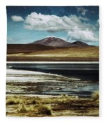 Lagoon Grass Bolivia Vintage Fleece Blanket