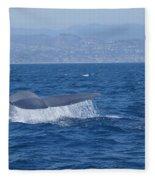 Laguna Whale Fleece Blanket